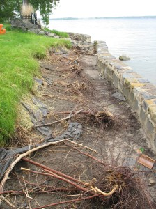 How Buff is your Buffer?  Shoreline Stabilization gets a Makeover