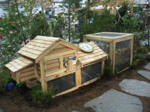 Building a Mobile Chicken Coop for Pastured Hens