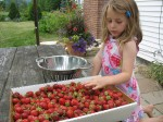 making strawberry jam